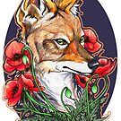 A Jackal and Poppies by mstaton