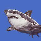 Great White Shark by shinypennyart