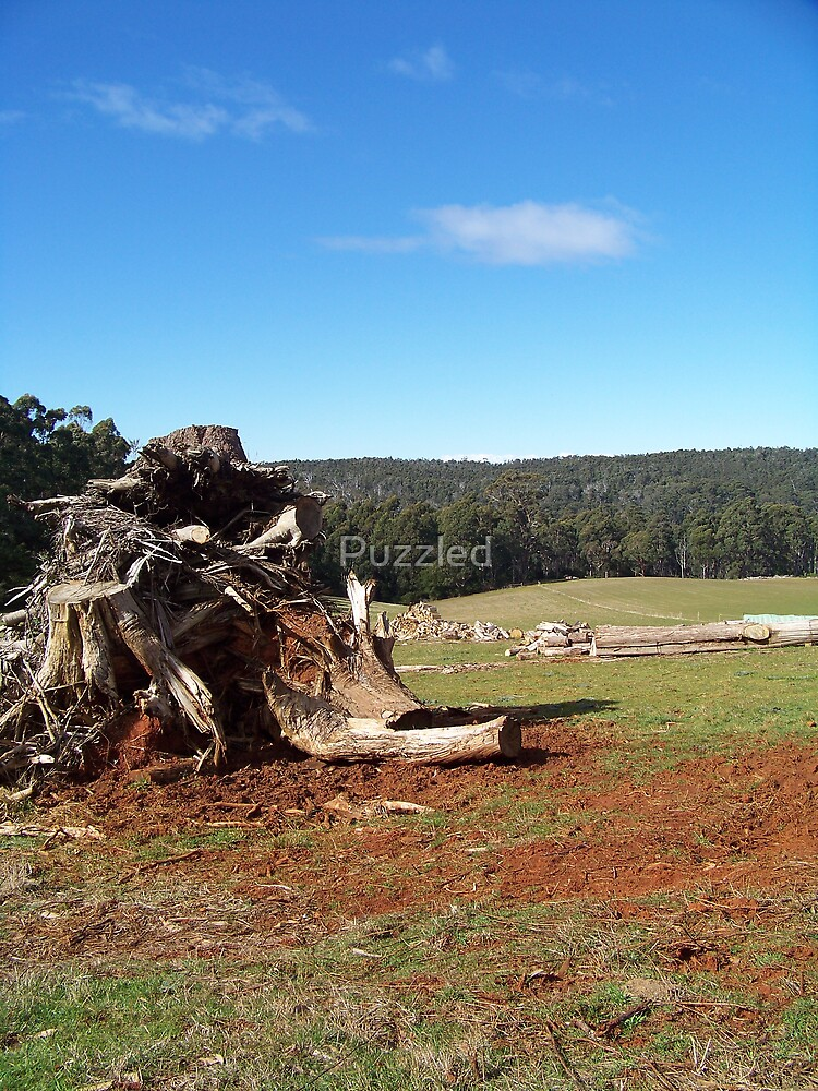 Graveyard for the Unwanted Trees  by Puzzled