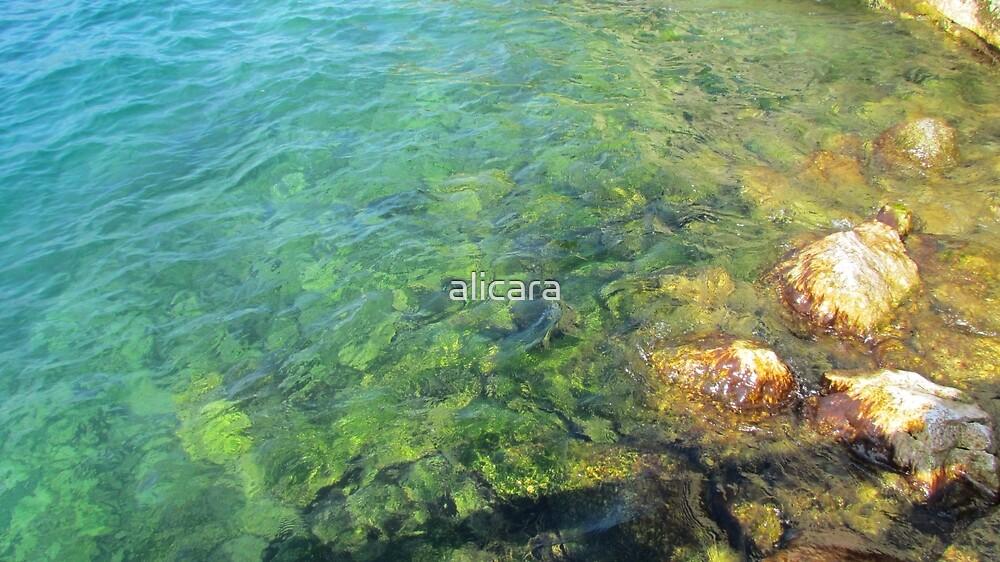 water by alicara