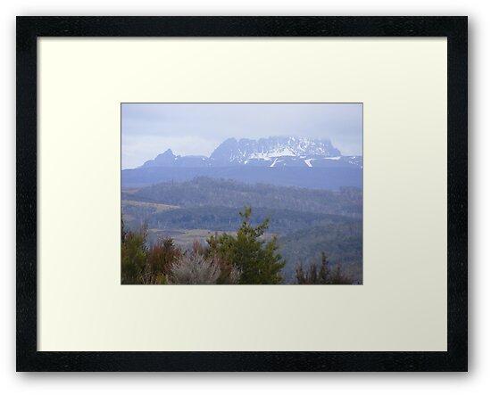 Cradle Mt viewed from above the Vale of Belvoir, Tasmania by gaylene
