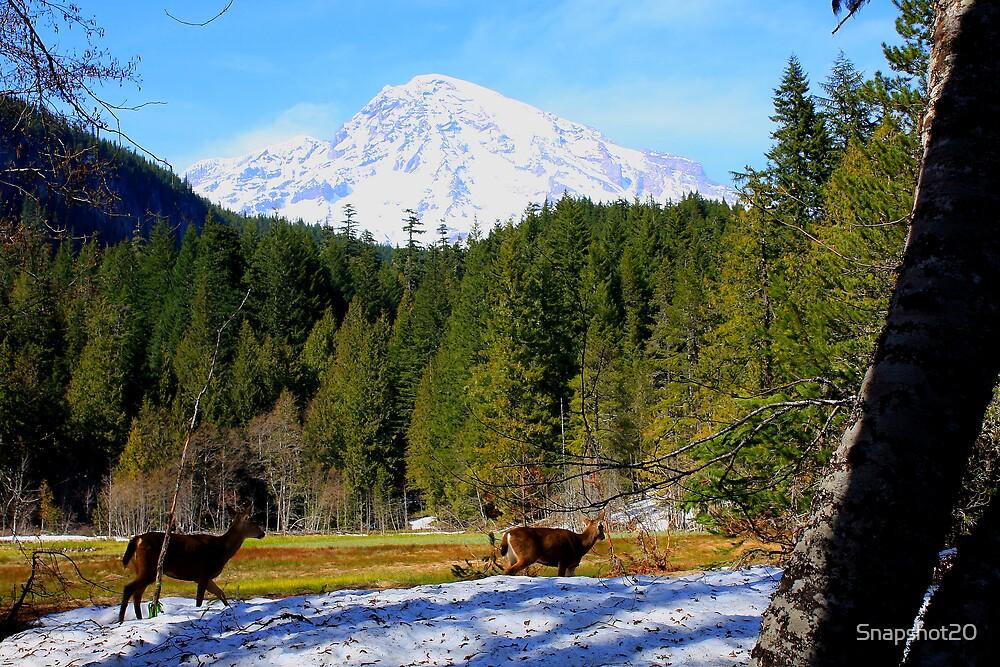 Mount Raineer and Deer by Snapshot20
