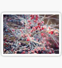 Frosty Berries Sticker