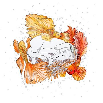 Cat and Golden fishes by Ruta