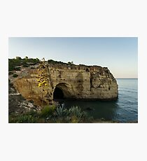 Sea Cave and Agave Bloom Spike - the Magic of Algarve Portugal Photographic Print