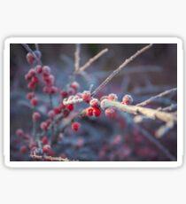 Wintery Frosty Red Berries Sticker