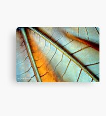 You're So Vein Canvas Print