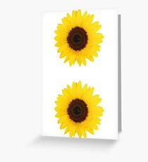 Two sunflowers Greeting Card