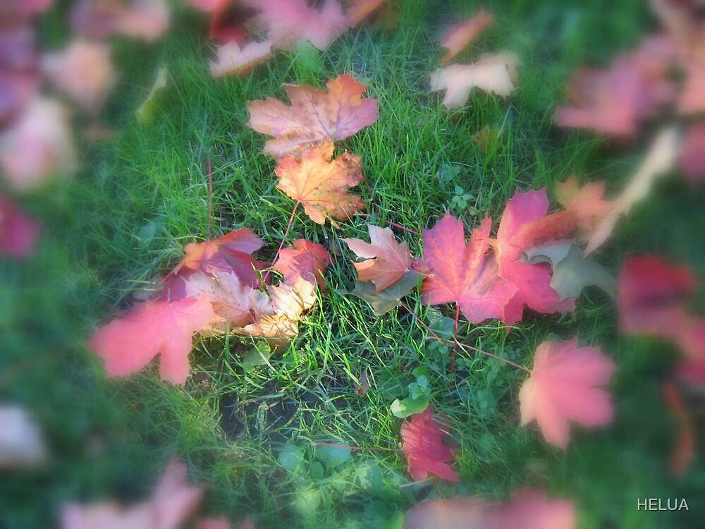 Fallen Leaves by HELUA