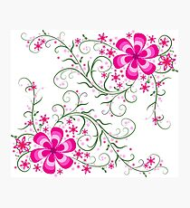 Floral On white Photographic Print