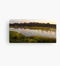 Lake Gwelup at sunrise Canvas Print