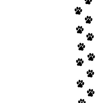 Kitty Paws by alexsollazzo