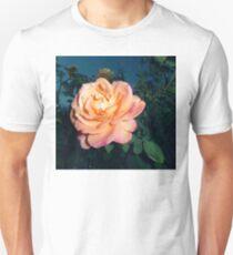 orange pink rose, dark sky 2 10/14/17 T-Shirt