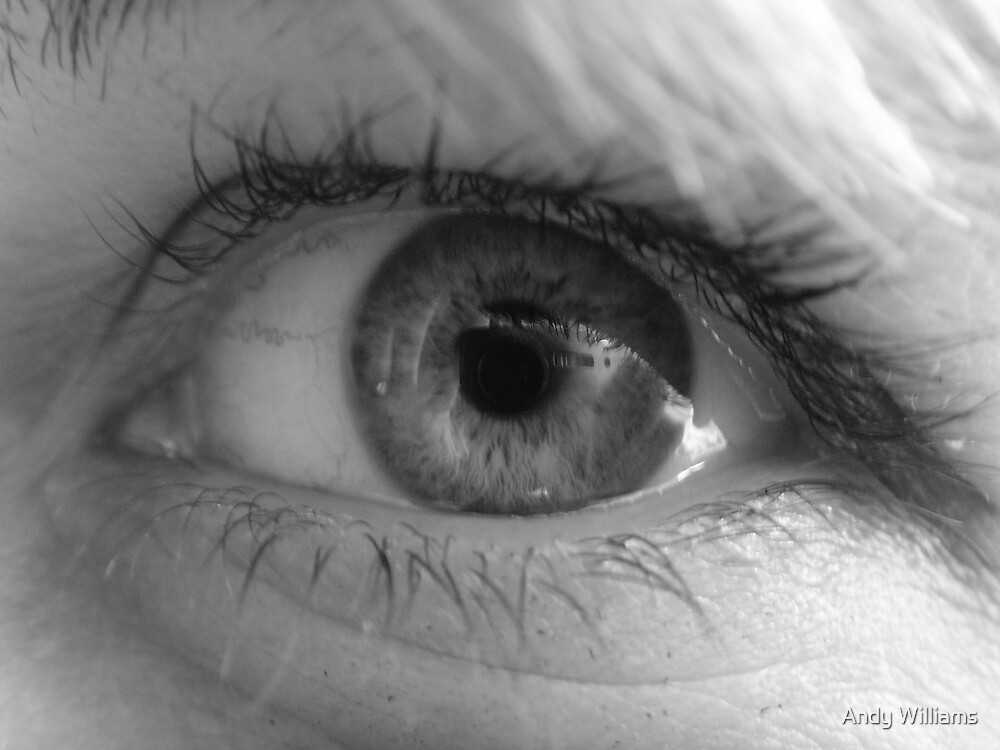 'Eye' have been watching you by Andy Williams