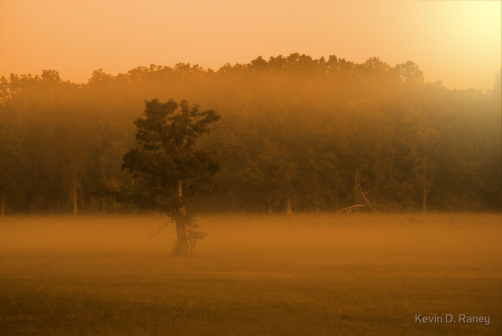 Rising Fog by Kevin D. Raney