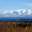 Mt. Hayes, Alaska by Bob Hortman