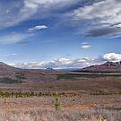 Denali National Park, Alaska by Bob Hortman