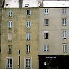 """""""French Windows"""" by Bradley Shawn  Rabon"""