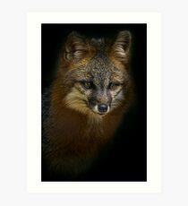Fox Power Art Print