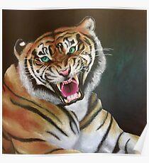 Bengal Roar Poster