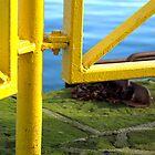 « Le Port de Reykjavik » par MrDrien