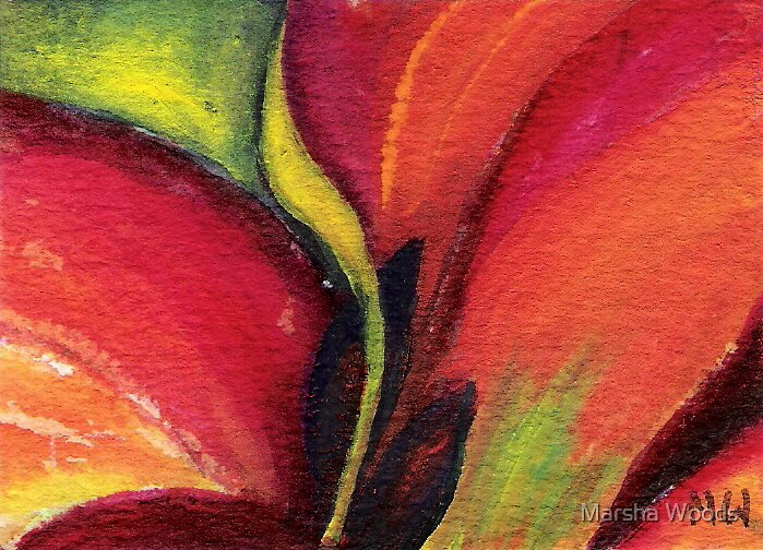 Red Petal by Marsha Woods