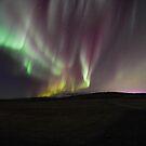 Colored Lights by Bob Hortman