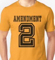 2nd Amendment 2 Gun Rights U.S. USA Gift T Shirt Pro-Gun America Pro American US Patriotic Patriot T-Shirt
