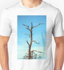 Ibises On Bare Tree  T-Shirt