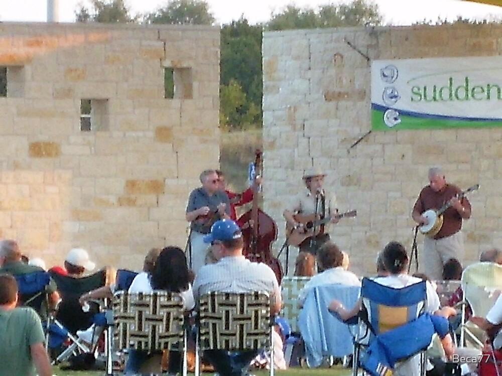 Blue Grass Jazz Park Festival by Beca77