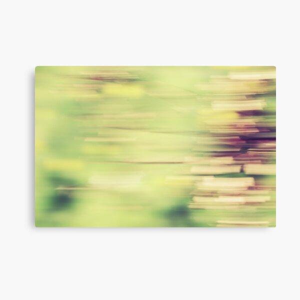 rectangulisme Canvas Print