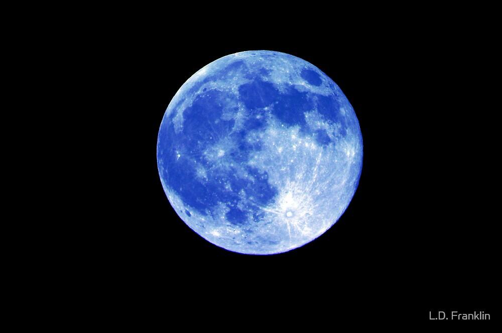 Blue Moon by L.D. Franklin