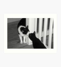 Kitty Meet And Greet Art Print