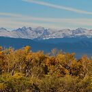 Colorful Trees and Majestic Mountain Peaks by Bo Insogna