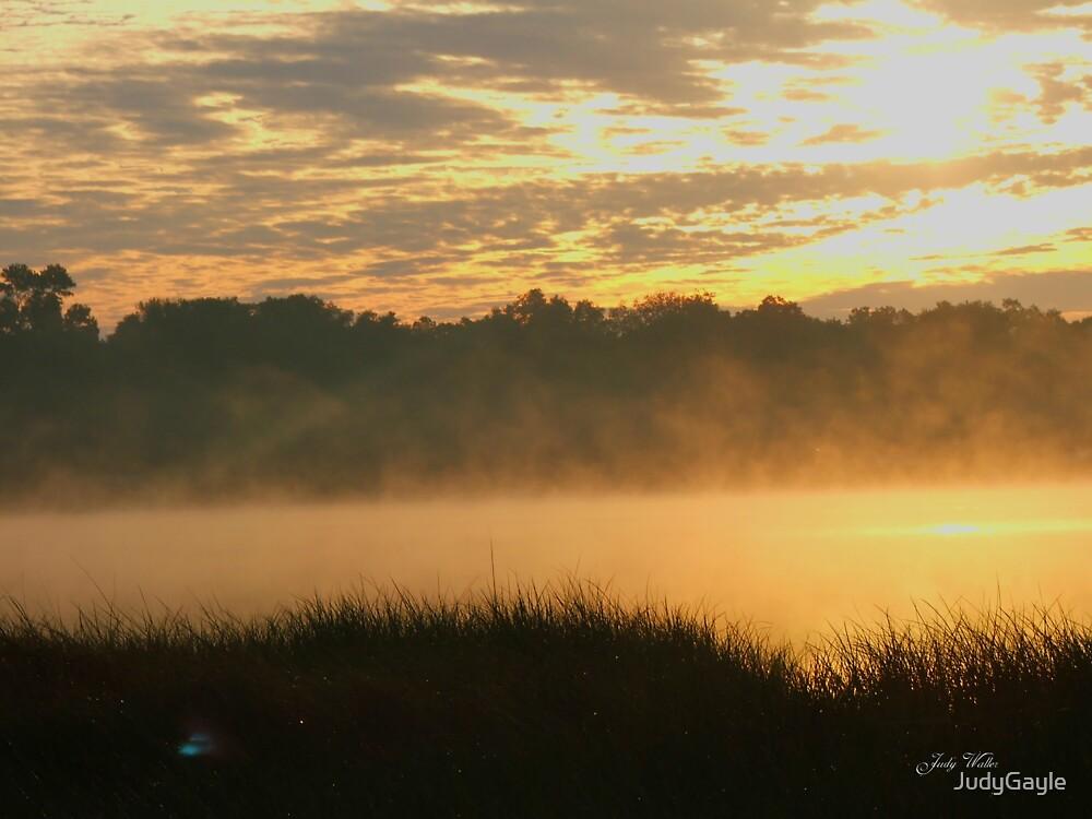 Foggy Sunrise by Judy Gayle Waller