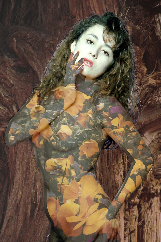 Painted Lady by Habenero