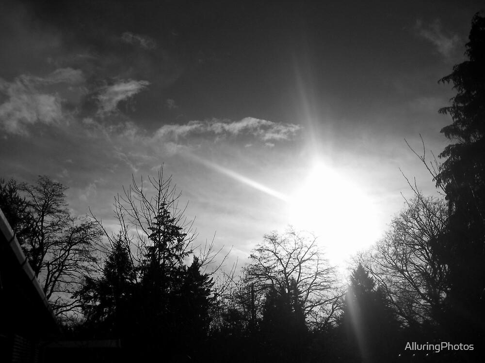 Sun by AlluringPhotos