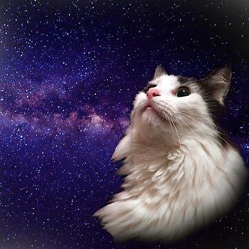 Mallomar in Space! by KitaStCyr