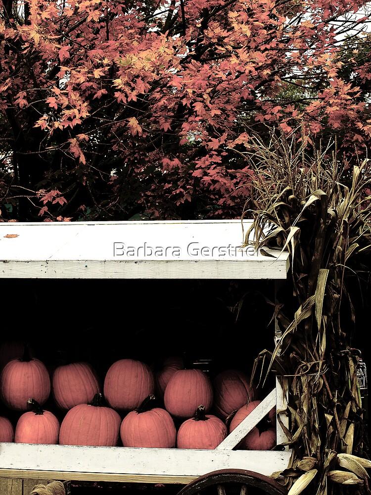 Pumpkin Cart 2 by Barbara Gerstner