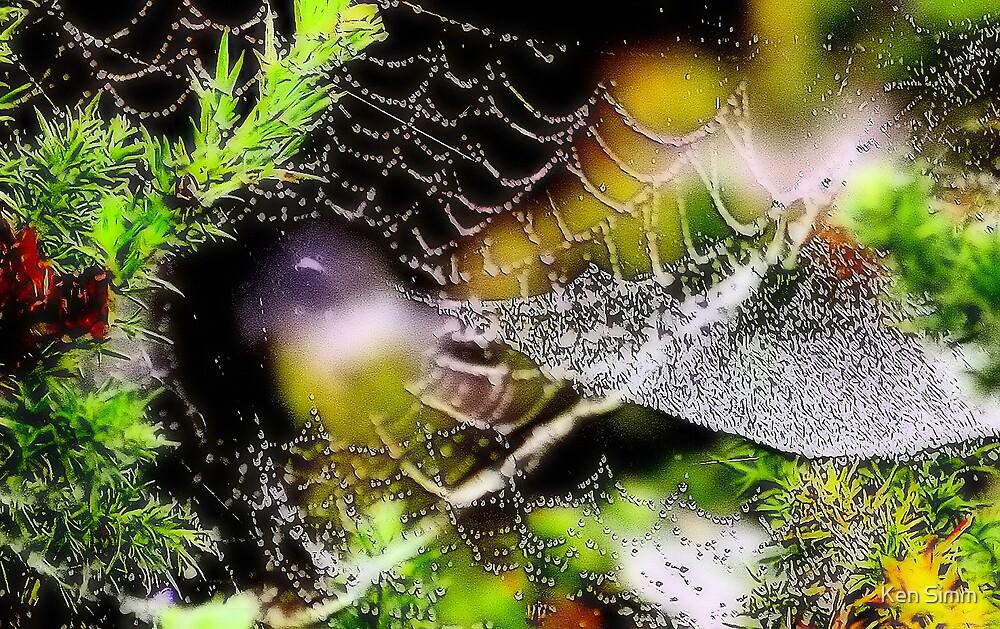 Web by Kenart
