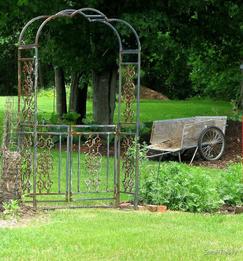 Serene Garden by Sarah Reeve
