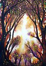 Autumn Light by Linda Callaghan