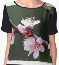 Peach Blossoms Women's Chiffon Top