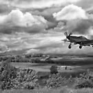 Stormy Landing mono by Pauline Tims
