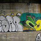 Kananaskis Country Graffiti by kennedywesley