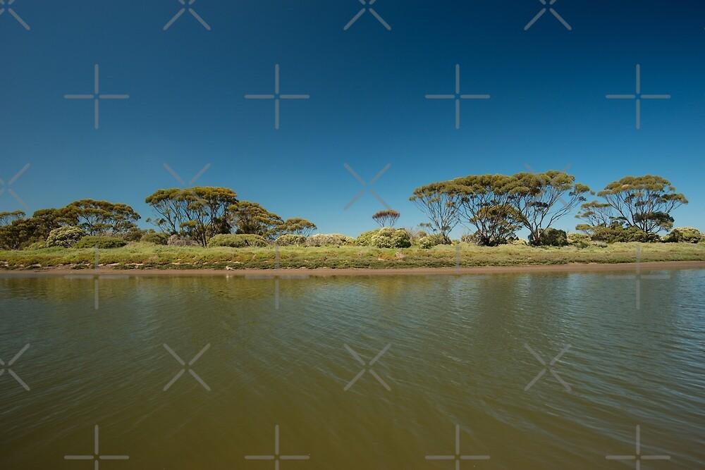 Onkaparinga River, South Australia by SusanAdey