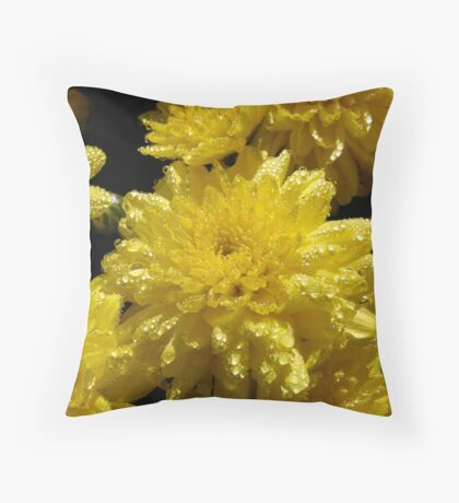 Raindrops on Roses, I Mean Mums Throw Pillow