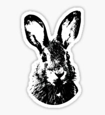 Rabbit Portrait Sticker