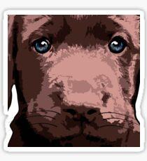 Hot chocolate Labrador puppy Sticker