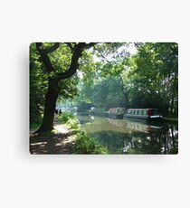 Summer on the River Wey Navigation, Wisley, Surrey, U.K. Canvas Print